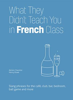 What They Didn t Teach You in French Class PDF