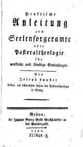 Praktische Anleitung zum Seelensorgeramte oder Pastoraltheologie für wirkliche und künftige Seelensorger