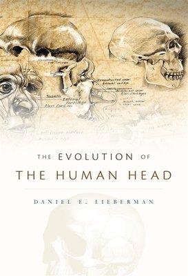 The Evolution of the Human Head PDF