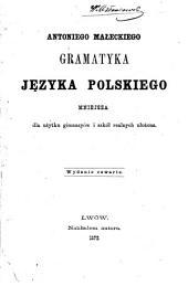 Gramatyka jezyka polskięgo: mniejsza dla uzytku gimnazyów i szkol realnych ulozona