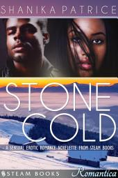 Stone Cold - A Sexy Erotic Romance Novelette from Steam Books