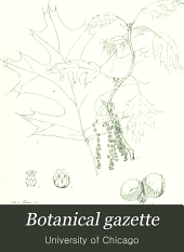 Botanical Gazette: Volume 26