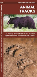Animal Tracks PDF