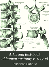 Atlas and text-book of human anatomy: Volume 1