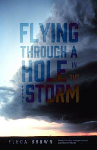 Flying through a Hole in the Storm PDF