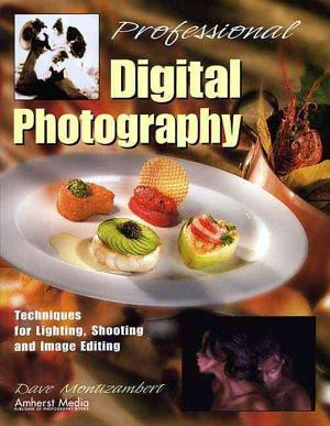 Professional Digital Photography PDF