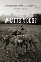 What Is a Dog  PDF