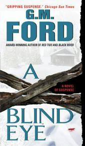 A Blind Eye: A Novel