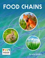 Food Chains PDF