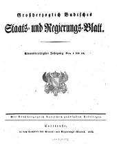 Grossherzoglich-Badisches Staats- und Regierungs-Blatt: Band 31