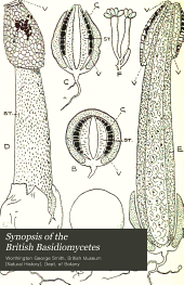 Synopsis of the British Basidiomycetes: a descriptive catalogue of the drawings and specimens in the Department of botany, British museum