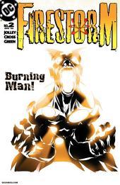Firestorm (2004-) #2