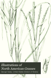 Illustrations of North American Grasses: Issue 81