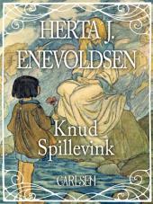 Knud Spillevink