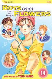 Boys Over Flowers: Volume 14