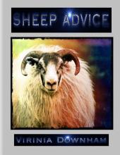Sheep Advice