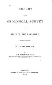 Report of the Geological Survey of the State of New Hampshire, Showing Its Progress During ... [1868]-1872: Volume 3