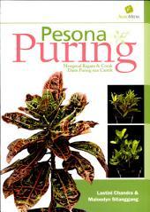 Pesona Puring; Mengenal Ragam & Corak Daun Puring nan Cantik