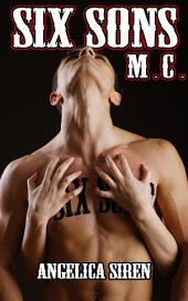 Six Sons (Biker MC Erotica)