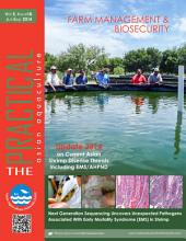 The Practical Magazine Issue 18: Asian Aquaculture 'The Practical' Magazine | Connecting Aquaculture Professionals
