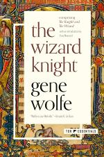 The Wizard Knight