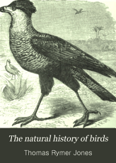 The Natural History of Birds PDF