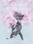The Big Photo Book of Cats  Kittens  and Kitties  Hardcover  PDF