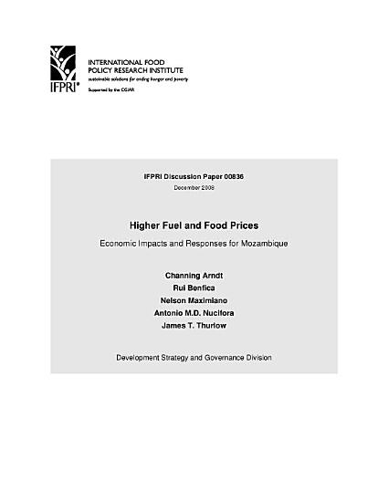 Higher Fuel and Food Prices  Economic Impacts and Responses for Mozambique PDF