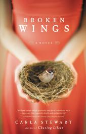 Broken Wings: A Novel