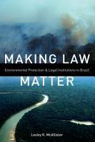 Making Law Matter PDF