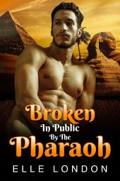 Broken In Public By The Pharaoh