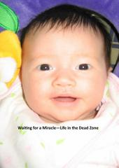 Waiting for a Miracle - Life in the Dead Zone