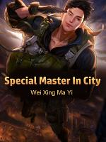 Special Master In City PDF