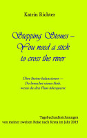 Stepping Stones   You need a stick to cross the river PDF