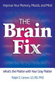 The Brain Fix