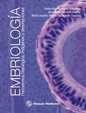 Embriología: Panorámica histológica, imágenes y descripciones