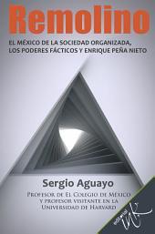 Remolino: El México de la sociedad organizada, los poderes fácticos y Enrique Peña Nieto