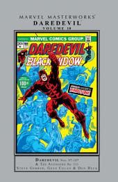 Daredevil Masterworks Vol. 10