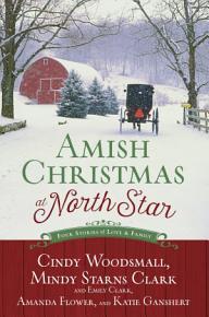 Amish Christmas at North Star PDF