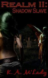 Shadow Slave: Realm II