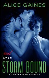 Storm Bound: A Cabin Fever Novella