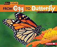 From Egg to Butterfly PDF
