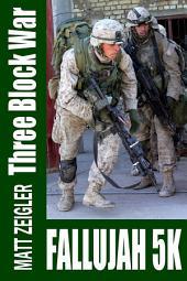 Three Block War: Fallujah 5K