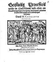 Geißlung Procession, welche im Lutherthumb ... gehalten wird
