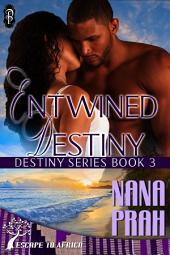 Entwined Destiny (Destiny African Romance #3)