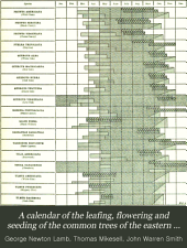 A calendar of the leafing, flowering and seeding of the common trees of the eastern United States