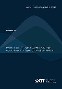 Uncertainties in energy markets and their consideration in energy storage evaluation