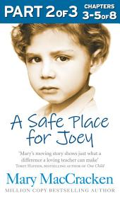 A Safe Place for Joey: Part 2 of 3