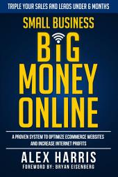 Small Business Big Money Online: A Proven System to Optimize eCommerce Websites and Increase Internet Profits