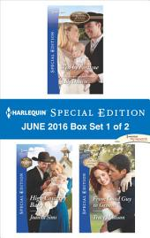 Harlequin Special Edition September 2015 - Box Set 1 of 2: An Officer and a Maverick\Destined to be a Dad\Coming Home to a Cowboy